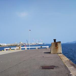 丸亀港の児島競艇場行き船乗り場跡地北側でサビキ釣り 丸亀市