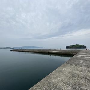 馬篠漁港でサバやアジやイワシをサビキ釣り 東かがわ市