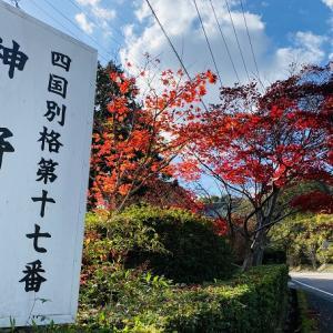 神野寺もみじの紅葉が美しい 満濃池を守護するお大師様 まんのう町