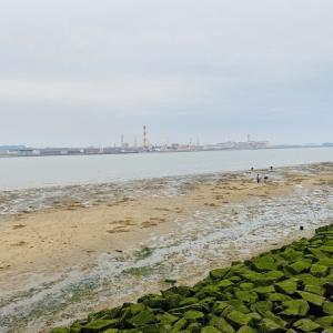 高梁川河口 マテ貝掘りと潮干狩り  倉敷市 中国電力玉島発電所東側