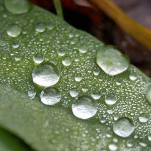 雨天の日や飲酒でたまる湿気に負けない!腰の痛みを減らす《湿気ケア》