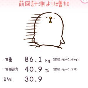 11月14日ダイエット10日目