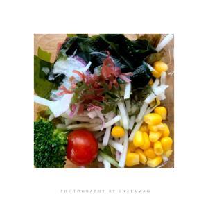 10種具材のダイエット向きサラダ