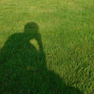 孤独は健康に悪いのでしょうか?