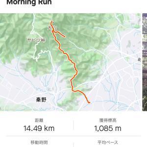 丹沢大山ダウンヒル縦走。