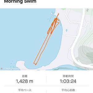 一年ぶりの海練習。