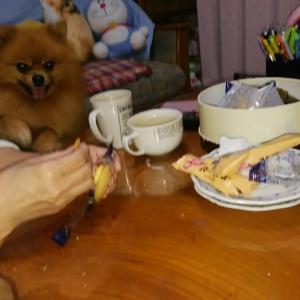 大好きなクッキー(*^_^*)