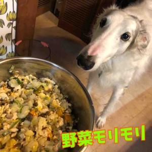 食っちゃ寝(( _ _ ))..zzzZZ