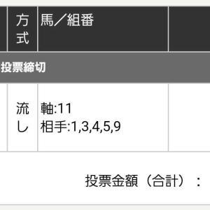 今日も(*´∀`*)