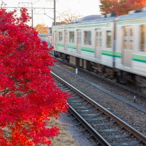 全快復職御礼!今年いっぱいずっと路線全駅紹介(37)東日本旅客鉄道 横浜線