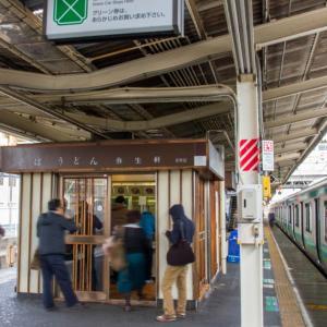 今年いっぱいずっと路線全駅紹介(44) 東日本旅客鉄道 成田線(その2)