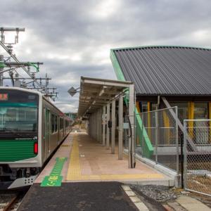 今年いっぱいずっと路線全駅紹介(53) 東日本旅客鉄道 烏山線