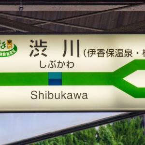 イチゴイチエキ。傑作選【2016/5/30投稿】群馬県編1/3 #0998 渋川駅