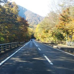 秋の車中泊