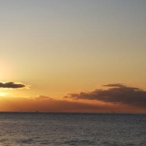 2019 フルスイング NAGE NO.18 マコガレイ投戦 海峡へ
