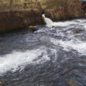 渓流へ ニジマス釣行
