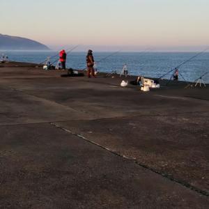 2020 フルスイング NAGE NO.11 マガレイ投戦⑤  せたなブルーの海へ