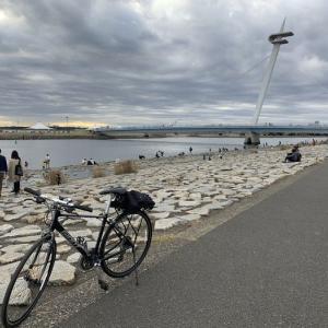 【サイクリング】山手通り走破→荒川CR→葛西100kmロングライド