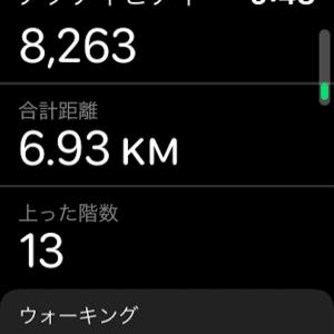 【オナ禁で整う】散歩の距離の適正化〜禁63日目