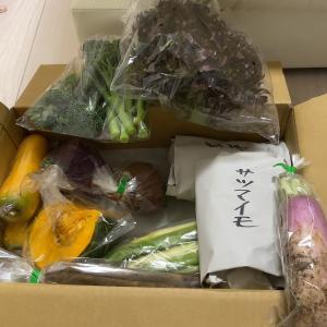 妊活中の野菜の食べ方について