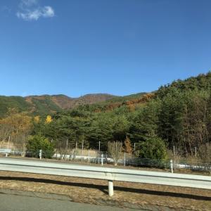 北関東から南東北へ① 高速道路も観光地 期間限定の景色に感動