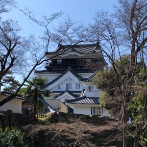 徳川家康出生の城『岡崎城』 岡崎公園内にある城はデートにもお勧め