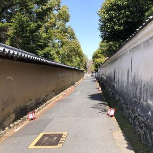 『東大寺』を拝観して思うこと 【歴史の重み】【建築の凄さ】【心に湧いた幸福感】