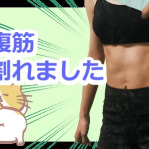 【腹筋女子】ぽっこりお腹の胃下垂女でも腹筋割れた!初心者向け筋トレ方法