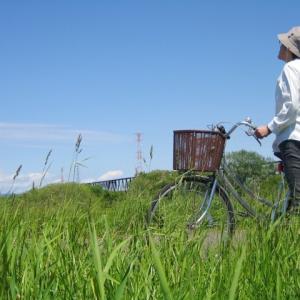 ライドコースは、風向きで決める! 向かい風では、重い荷物が有利?