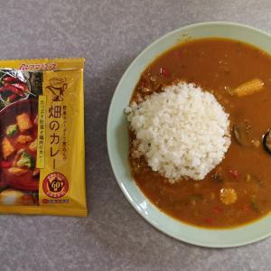たっぷり野菜と鶏肉のカレー(アマノフーズ)【フリーズドライ】