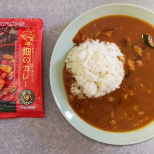 ひきわり豆のトマトカレー(アマノフーズ)【フリーズドライ】