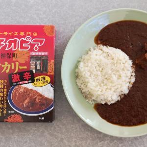 エチオピアビーフカリー激辛(MCC食品)【レトルト】
