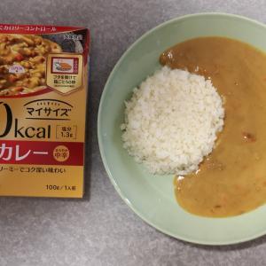 100kcal マイサイズ 和風カレー 中辛(大塚食品)【レトルト】