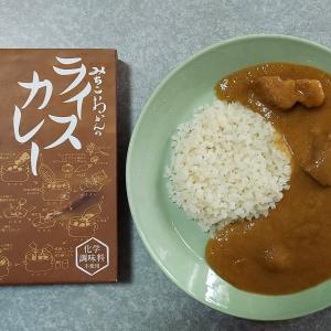 みちこおかんのライスカレー(株式会社おかん)【レトルト】