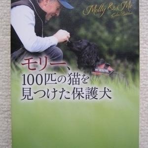 イギリスの有名なセレブ犬モリー。猫を救出する探知犬「モリー、100匹の猫を見つけた保護犬」コリン・ブッチャーの書評・あらすじ・感想