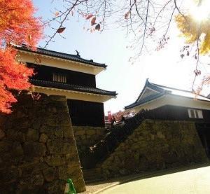 上田城跡公園の紅葉は終盤に