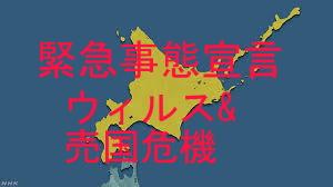 北海道緊急事態宣言発令 危機招いた中国資本への売国政策
