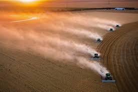 中国が米国からの一部農産物輸入停止へ