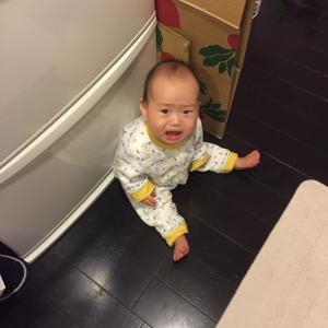 1歳になったら始めたい イヤイヤ期対策