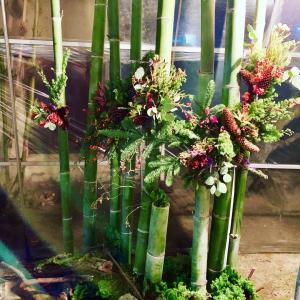 竹を使って和風クリスマスディスプレイ♬