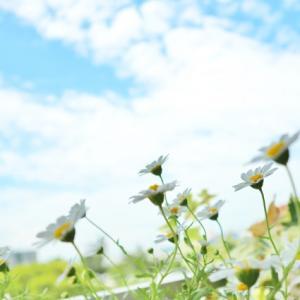 子どもの心に勇気を育む親子コミュニケーションのヒントと お花のパワーで家族に笑顔の花が咲く講座