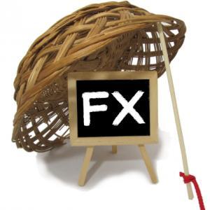 【FXで失敗?!借金?!】わかりやすいFXと始め方