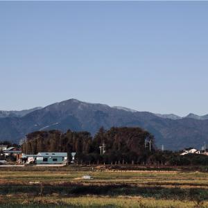 大山(藤沢市北部から)