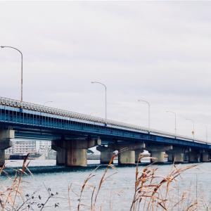 吉野川橋周辺(徳島県徳島市)