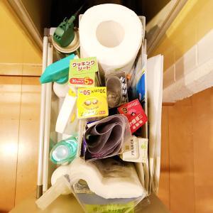 セリアの洗面台用ケースでキッチンの袋系を収納