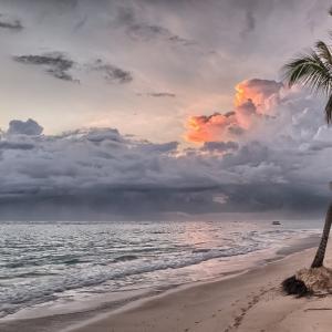 新年早々、いきなりビーチへ向かうの巻