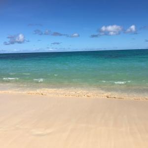 ハワイに多い、夫婦の組み合わせ。