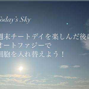【オートファジーで細胞を入れ替えよう♪】Today's Sky