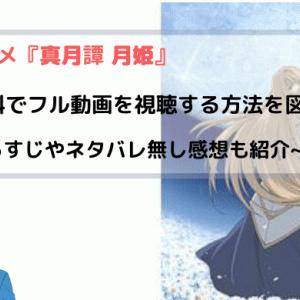 アニメ『真月譚 月姫』全話無料でフル動画を視聴する方法を紹介~TYPE-MOON原作~