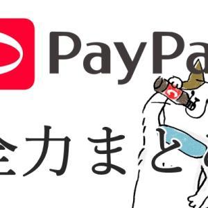 【随時更新】paypayについて全力でまとめてみました!!
